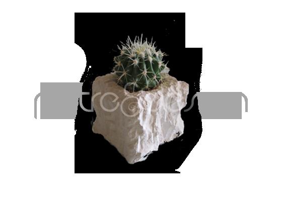 Vasetto cubo scheggiato in pietra leccese